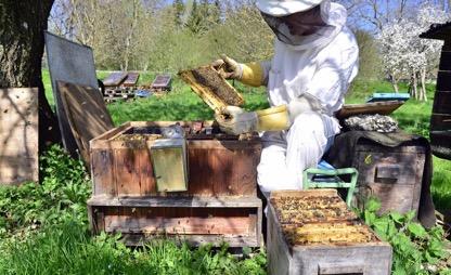 De Bijenreddende App